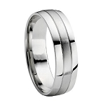 Men's Two Tone Titanium Brushed & Polished Finish Wedding Band