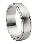 Titanium Brushed Finish Wedding Band - JT0118